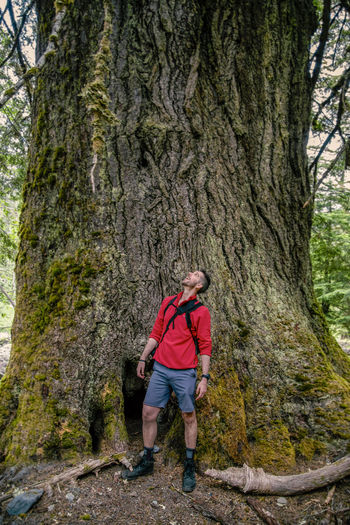 Man standing against tree in forest