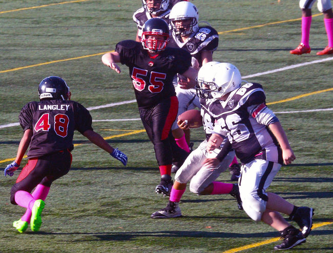 Junior Football in Minoru Park in Richmond B.C. Canada. Sports Team Competition Competitive Sport Teamwork Activity Sports Event  Outdoors Sports Clothing Football Helmet Richmond BC Canada Junior Football Team Sport Teamwork Athlete