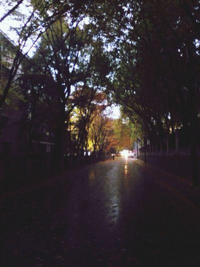 Landscape Street Home Rain