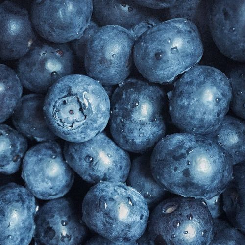 IPS2016Blue Berries Blueberries Food Fruits Healthy Antioxidants IPS2016Closeup Colour Of Life Color Palette