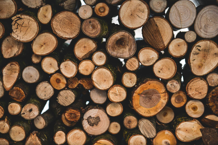 Cold Cold Weather Fire Fire Tongs Fire Wood Firewood Fuel Fuel And Power Generation Garden Heating Heating Costs Heating System Log No People Spanner Spanners Spoke Stack Temperature Timber Winter Wintertime Wood Wood - Material Woodpile