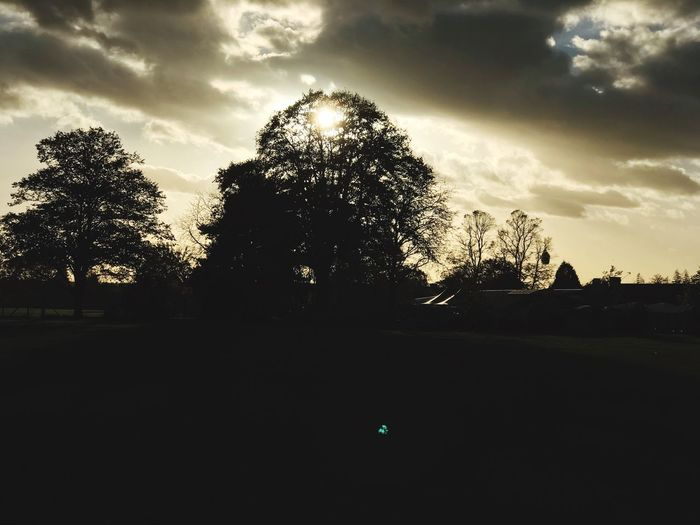 Sunset in the park Outdoors Sunset First Eyeem Photo