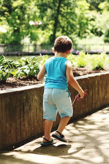 T6i Nature Childhood Rear View Casual Clothing Outdoors