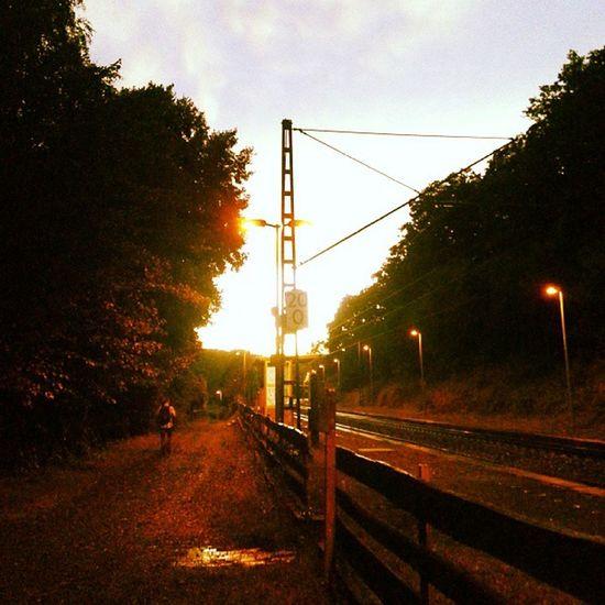 Sommerabendliche Bahnhofsszene in Nordhessen