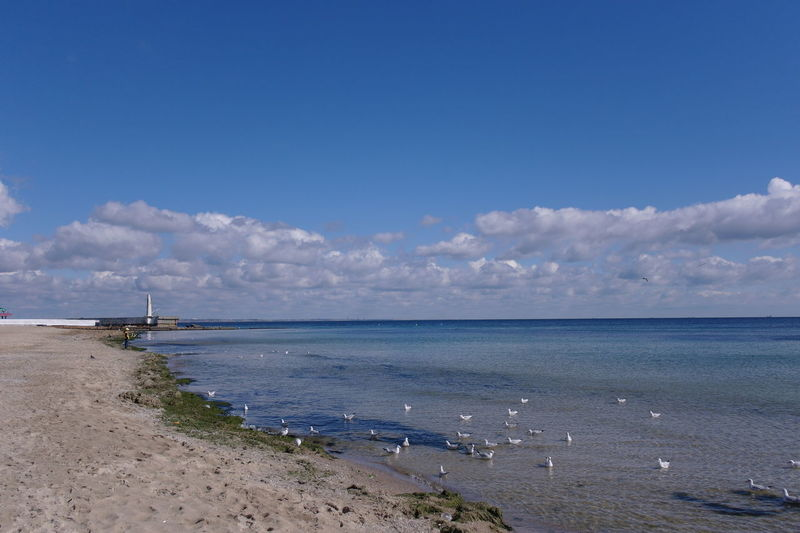 Odessa beach in September Sky Sea Water Beach Scenics - Nature Cloud - Sky Beauty In Nature Horizon Nature Tranquil Scene Horizon Over Water