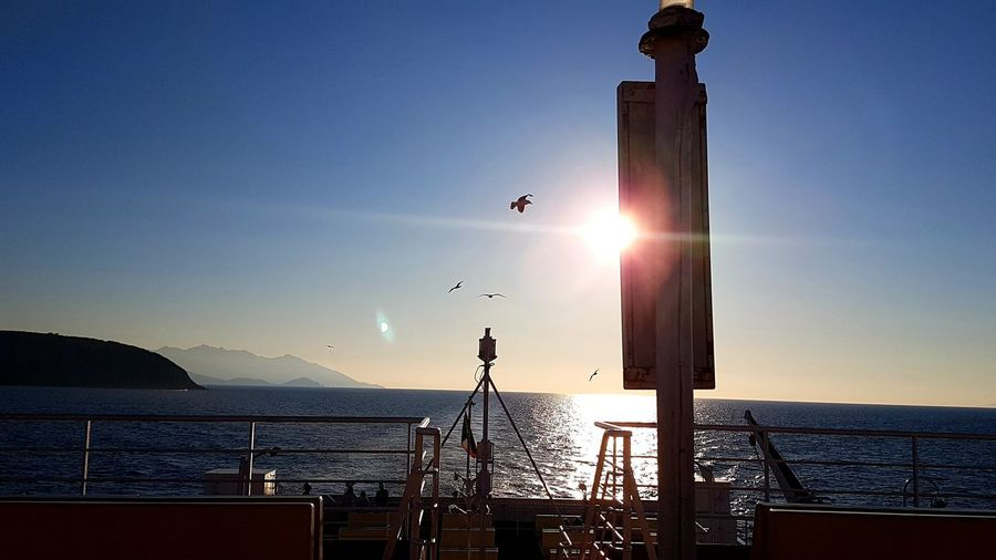 Travel On Board Back Home Ferryboat Tirrenic Sea Backlight Seagulls In Flight Seagulls Silouette & Sky Voyage Blue Sky Archipelago Sea Life Water Sea Flying Sunset Nautical Vessel Clear Sky Sun Sunlight Mid-air
