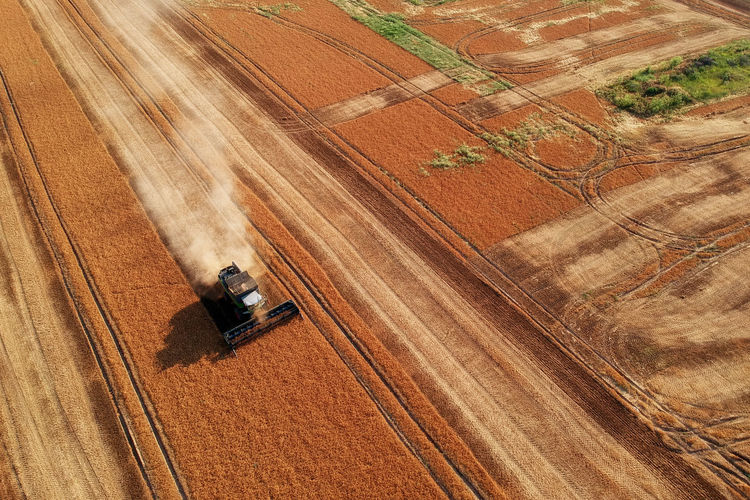 Aerial view of combine harvester machine, in the romanian fields Cereal Combine Harvester Drone  Gold Rice Wheat Field Aerial Agricultural Machinery Agriculture Farm Fendt Field Fielg Harvest Land Vehicle Landscape Nature Rural Scene Rye Field