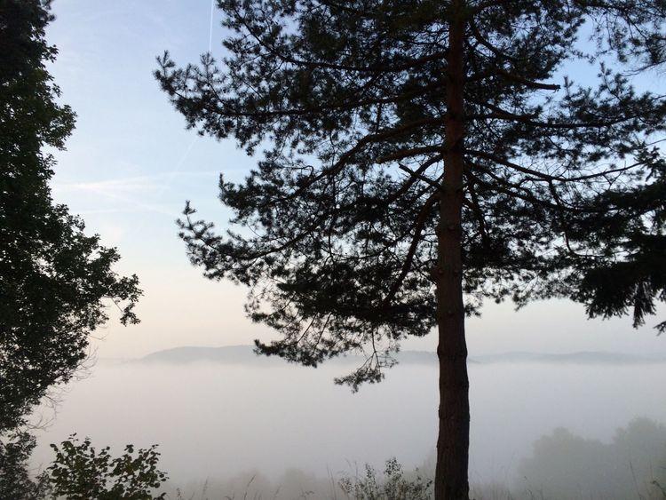Wandern im Herbst. Deutschland. Dein Tag Nature Walking Around
