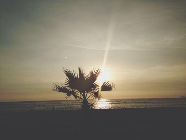 Enjoying The Sun Sea Nature Summertime