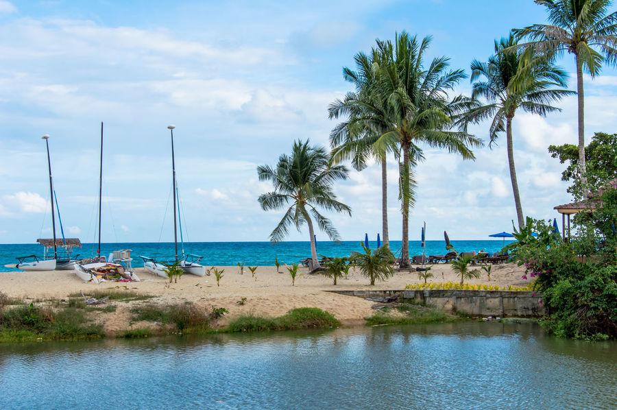 Beach Catamaran Cloud - Sky Coastline Day Island Lagoon Nature Nautical Vessel No People Ocean Outdoors Palm Tree Sea Sky Summer Thailand Tourist Resort Travel Destinations Tree Tropical Climate Tropical Island Water