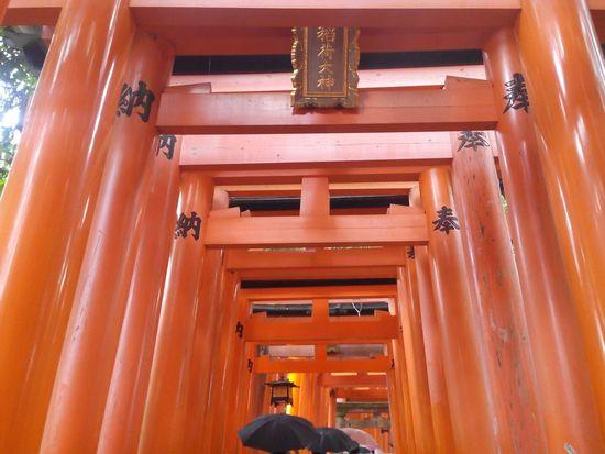 Japan Travel Photography The Purist (no Edit, No Filter) No Filter, No Edit, Just Photography Fushimi Inari Taisha Travelling EyeEm Japan Kioto Kyoto Fushimi Inari Kyoto