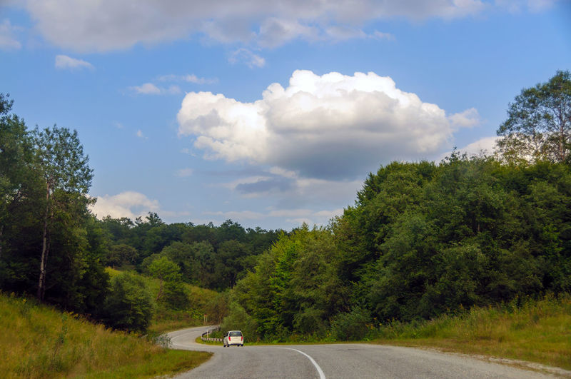 Tree Cloud - Sky Sky Day Outdoors No People Transportation Nature Road Pinaceae Landscape Forest Scenics Rural Scene Beauty In Nature Car Travel Car Trip Mountain Road Travel Beauty In Nature Green Color Travel Destinations Mountain Range Mountains Tourism