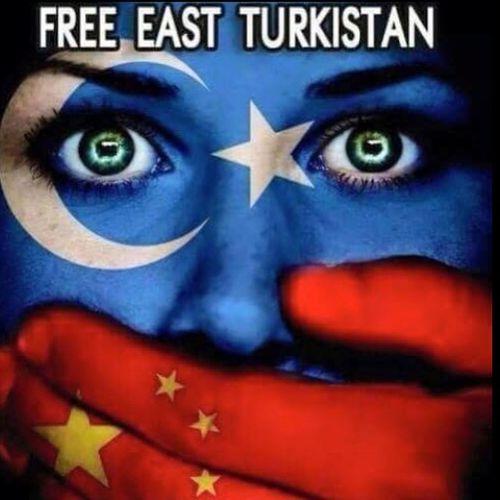 Free Palestine Free Turkmenistan Freedom No War Peace ✌ Love Türkiye @muhamed_dgn Instagram