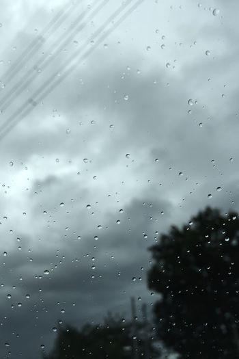 今の空模様。Now the sky. Rain Clouds And Sky 雨 空模様