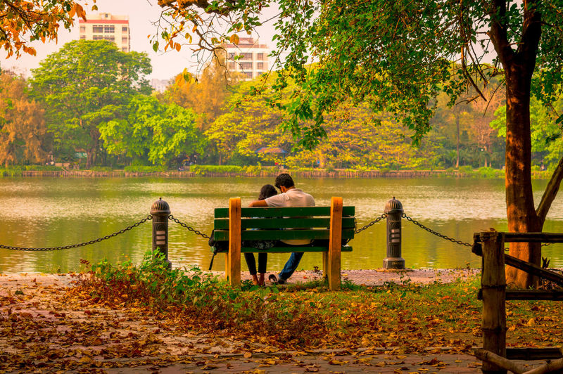 Rear view of people sitting on bench in park
