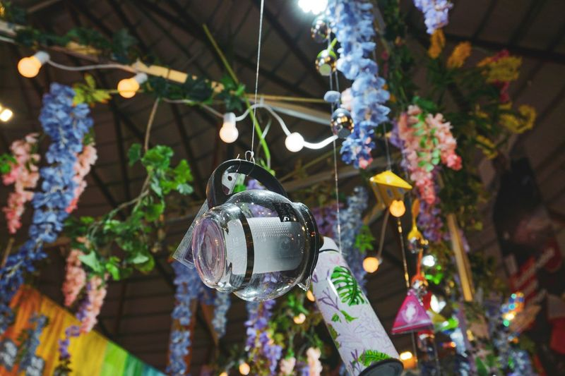 Passed by a tea shop and amazed with their deco. Literally love the hanging flowers Flowers Teapot Tea Shop Hanging Decoration Holiday Celebration Focus On Foreground Plant Tree Close-up Lighting Equipment Illuminated Nature Holiday - Event