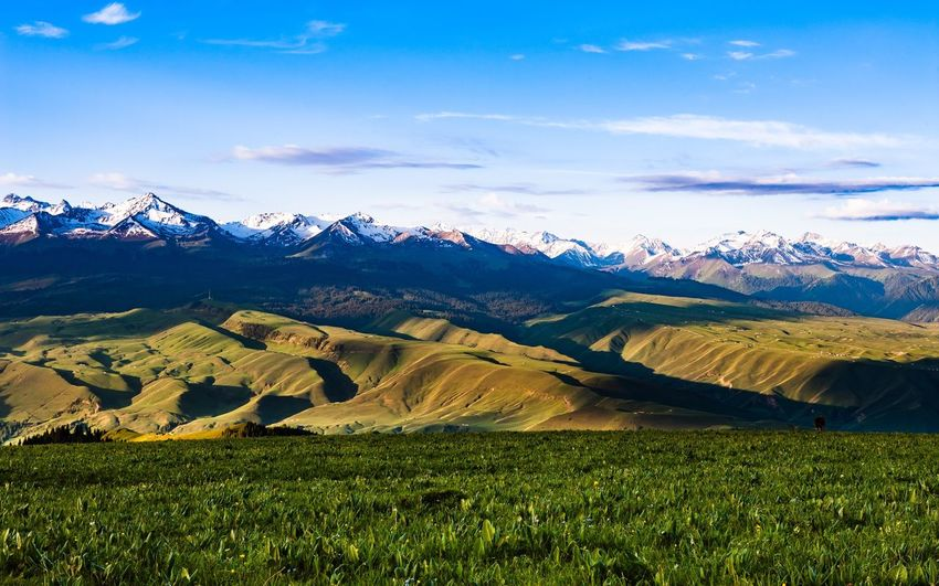 tian shan / shinjang uyghur Nature Mountain Tranquil Scene Scenics Landscape Beauty In Nature Mountain Range Tranquility Field Sky