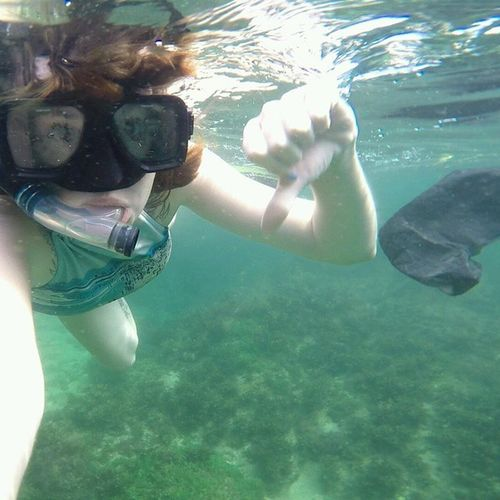 So sad whilst Snorkelling in Borneo to swim past lots of Plastic we need to be more careful Environment Waste Recycling Lovetheearth Ourhome Poorfishies Green Earth Pollution