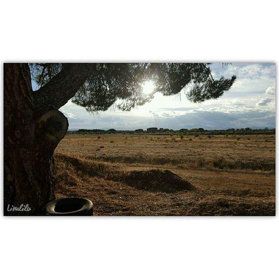 Paseando por sitios llenos de recuerdos... LaBañeza Igersleon MeGustaLeón Estaes_leon Estaes_castillaleon Estaes_espania Estaes_cielos EstaEs_Montes Estaes_de_todo Be_one_natura Loves_castillayleon Loves_world TodoEs_CastillaLeon Todoes_spain Ok_spain Igersspain SPAIN Ig_spain Total_CastillayLeon Descubriendoigers @Instagramers Loves_León EstaEs_Universal_5 IgersBañezanos Spain_gallery Be_one_rural EstaEs_Natura SinFiltros Vacaciones Total_Spain Total_Rural