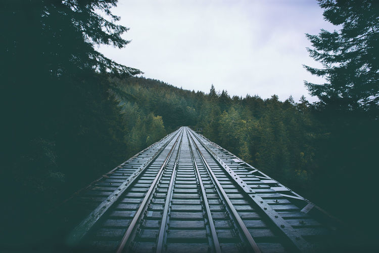 Railroad track amidst trees against sky