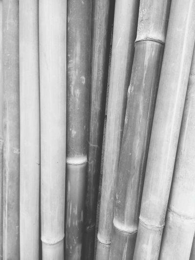 ไม้ไผ่ EyeEm Selects Backgrounds Full Frame Close-up Display Raw Window Display Price Tag Collection Retail Display Arrangement For Sale Repetition Corrugated Iron Market Stall Various Stall Fabric Shop Shelves