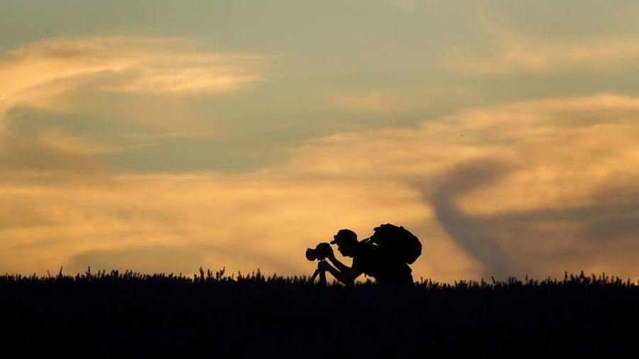 Silhouette man photographing on plant against sky during sunset