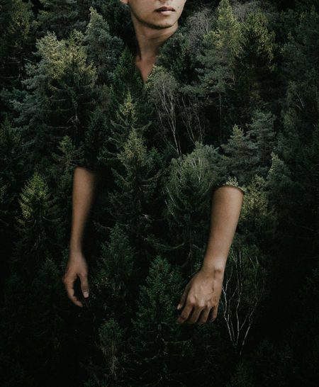 The gift from Forest! Double Exposure Fashion Awesome Beauty In Nature Creative Forest Growth Nature One Person Tree Young Adult