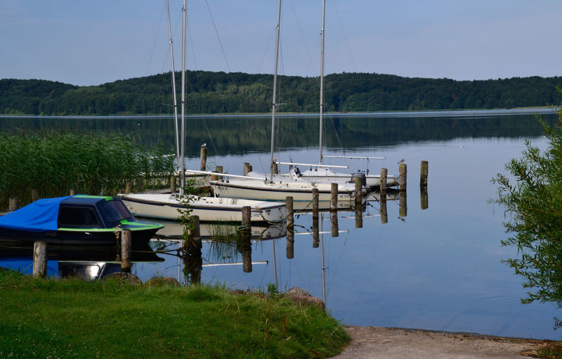 Sailboats moored on lake against sky