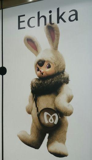 Cute Rabbit Advertisement Posters