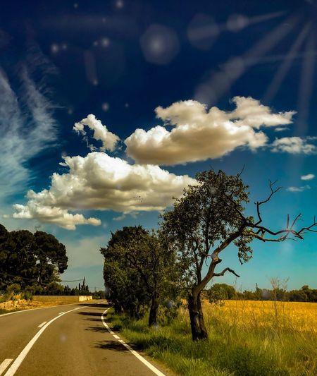 👽 Cloud - Sky