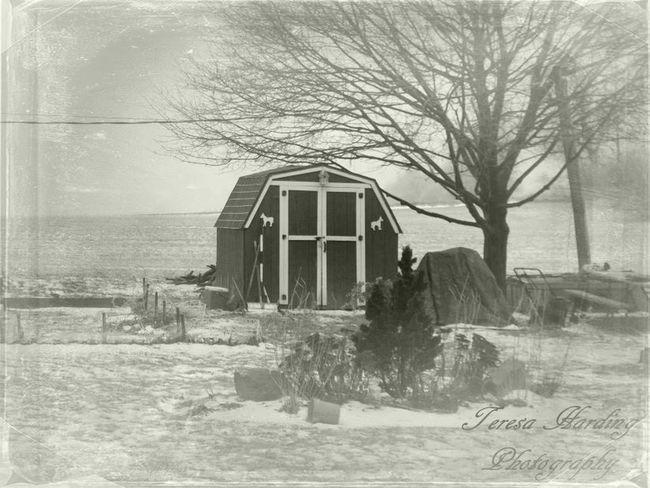 Shades Of Grey FiftyShadesOfGrey Barn Snow Nature Winter Photography