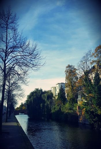 River amidst trees against sky in city