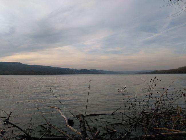 Autumn Danube Gloaming Riverside Branch Clouds Dusk Fall River Sundown Sunset Water Waterfront