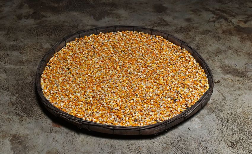High Angle View Of Corn Kernels In Plate On Floor