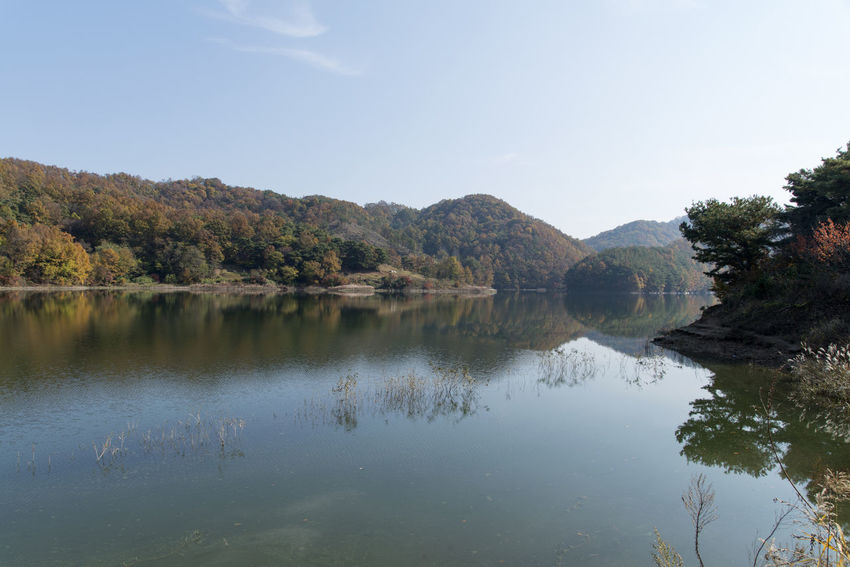 autumn landscape of Busodamak, a beautiful lake located in Okcheon, Chungbuk, South Korea Autumn Autumn Lake Beauty In Nature Clear Sky Day Lake Lake In Autumn Lake In The Morning Lake Reflection Morning Lake Mountain Nature No People Outdoors Reflection Scenics Sky Tranquil Scene Tranquility Tree Water Waterfront