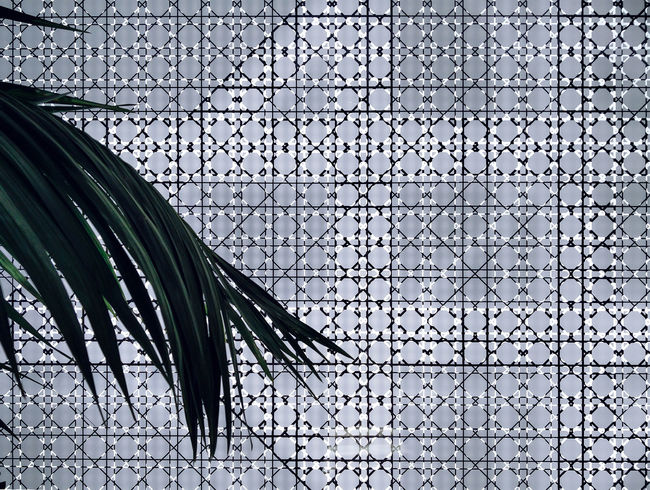 Palm V Pattern - Backgrounds Close-up Day Design Detail Full Frame Geometric Shapes No People Palmleaves Pattern Tile