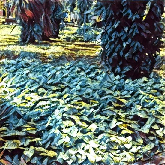 Abundance Market Outdoors Travel Photography Prisma Prisma App Nature