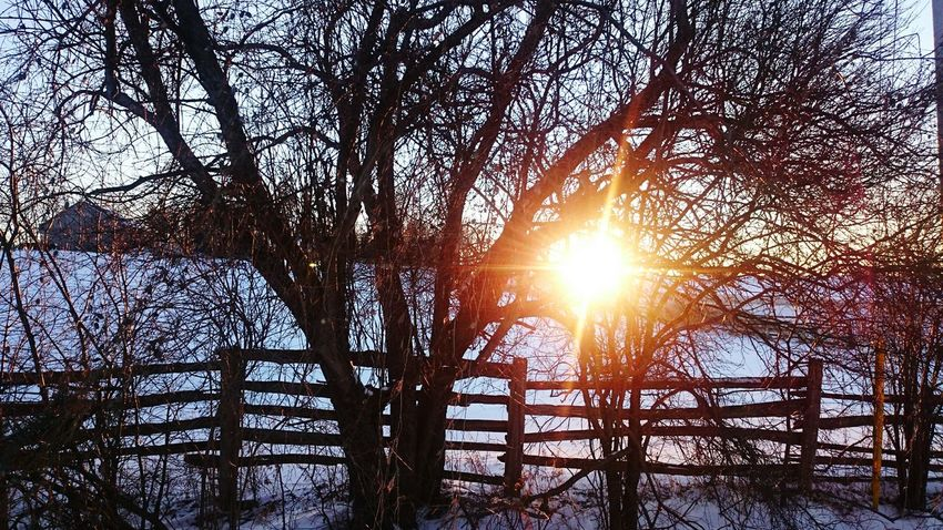 Nature walk in winter.. Human Meets Technology Sunset Ontario, Canada Wintertime Sony Z2 Photography The City Light