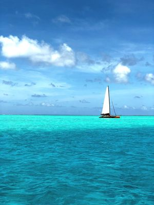 Sea Sky Water Cloud - Sky Scenics Beauty In Nature Horizon Over Water Sailboat Sailing Blue Tranquil Scene