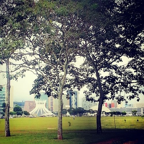 Brasília Brasil Byebyebrasil .