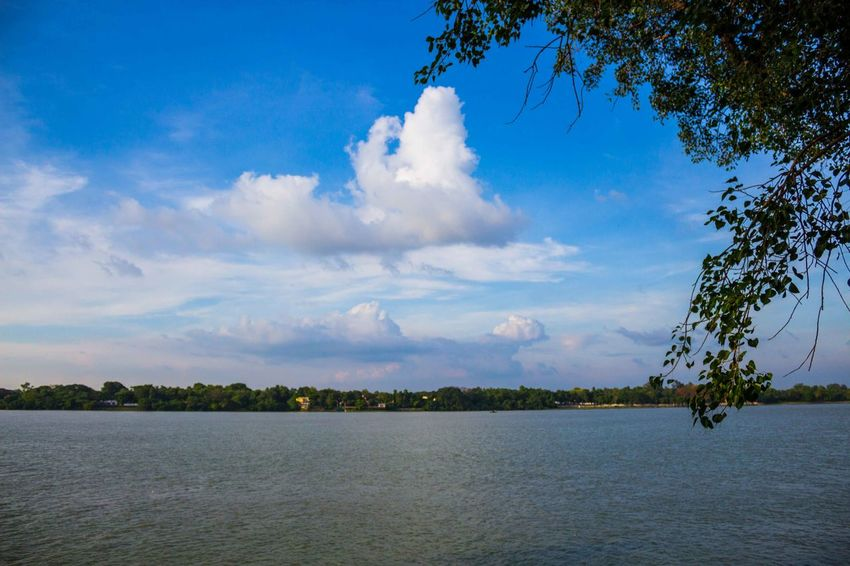 India River View Travelling Beauty In Nature Blue Blue Sky And Clouds Cloud - Sky Day Durgapuja India Tour Lake Landscape Nature No People Outdoors Scenics Sky Tranquil Scene Tranquility Tree Vibrant Color Water