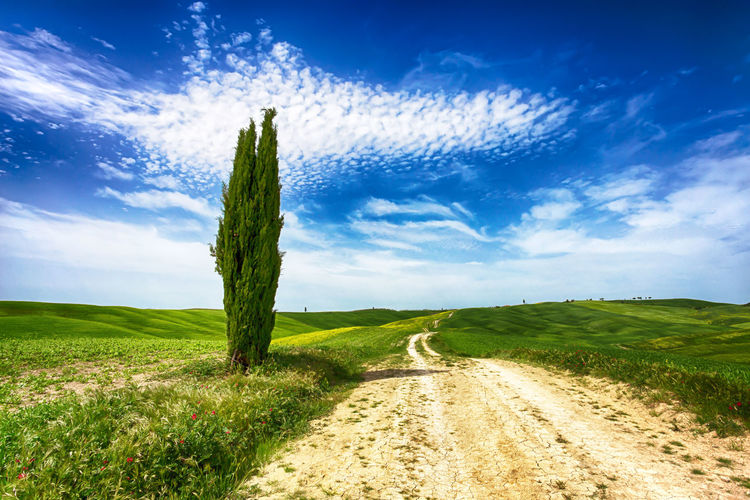 da585a23187a6 Tuscany Landscape Italy Countryside Italian Cypress Farm Spring Nature Hill  Field Country Green Toscana Rural Scenery