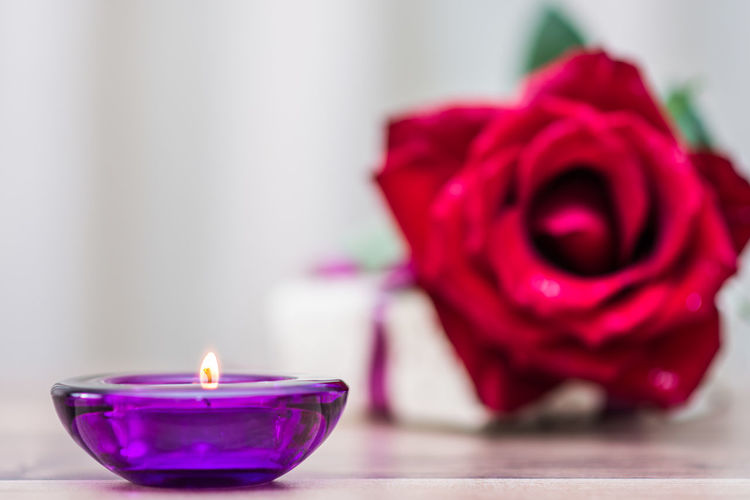 Burning Candle Close-up Day Diya - Oil Lamp Flame Flower Flower Head Focus On Foreground Fragility Heat - Temperature Illuminated Indoors  No People Petal Red Rose - Flower Rose Petals Selective Focus Table Tea Light