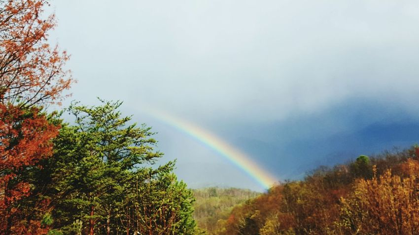 Great Smoky Mountains National Park Tennessee Rainbow After The Rain Travel Photography EyeEm Best Shots United States Naturelovers Mountains Showcase April