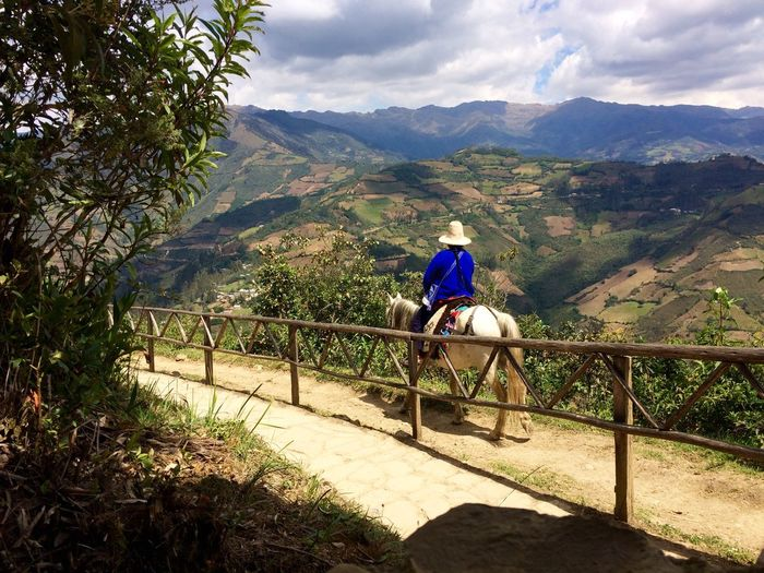 This Is Latin America Rural Scene Mountain Life An Eye For Travel Animals Horse Service Animals The Journey Is The Destination On The Way People And Places The Great Outdoors - 2017 EyeEm Awards