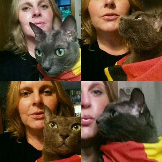 '54, '74, '90 and... ? We are ready for the big game and will keep our fingers crossed ⚽ @dfb_team @poldi_official Wm2014 GERARG Final Finale worldcup brazil aneurerseite catsofcatlicious catloversworld catlover catcuddles catsofinstagram catstagram koratcats koratcat korat catmodel cutie cute