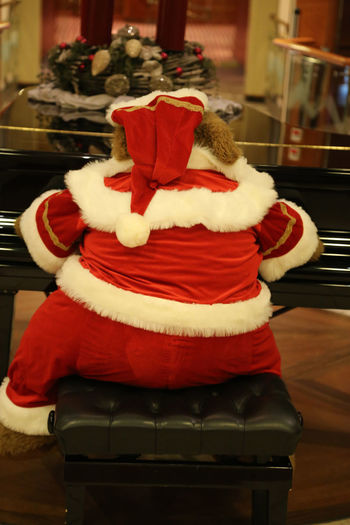 Bear Celebration Christmas Christmas Tunes Christmastime Chubby Close-up Concert Costume Dressed Up Entertainer Entertainment Funny Indoors  Musician Overweight Piano Player Piano Playing Pretending Red Red Dress Santa Bear Santa Claus