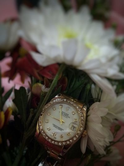 Do good things and good things will happen for you.💁 Celebration Water Wristwatch Luxury Rolex Rolex Watch Flower