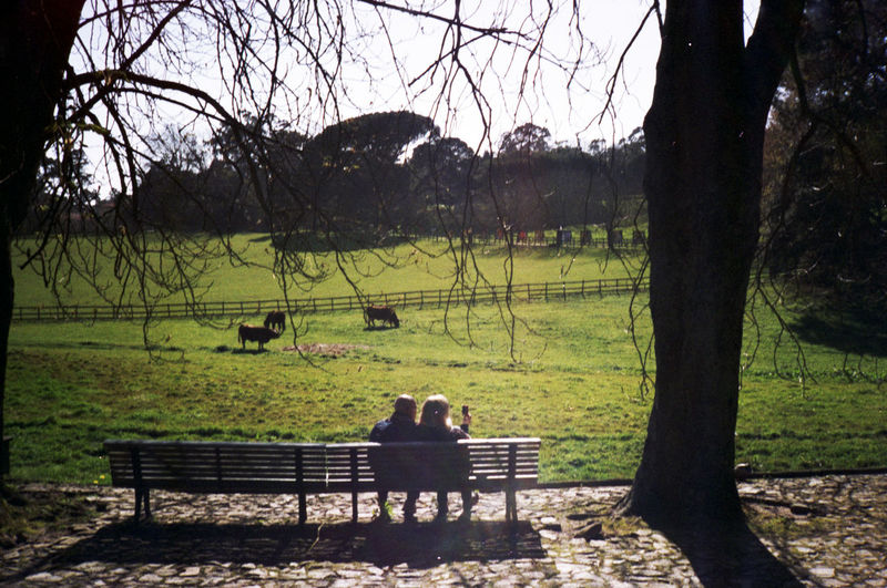 Analog Analogue Photography Couple Love Outdoors Testing Konica C35 for Sítio do Cano Amarelo
