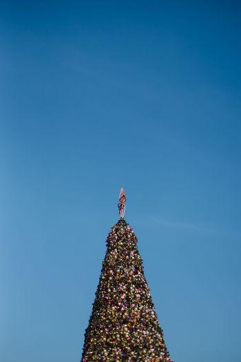 Blue Celebration Christmas Christmas Decoration christmas tree Copy Space Christmas Ornament Tree Sky Clear Sky Low Angle View